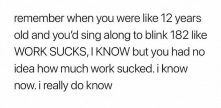 Text - remember when you were like 12 years old and you'd sing along to blink 182 like WORK SUCKS,I KNOW but you had no idea how much work sucked. i know now. i really do know