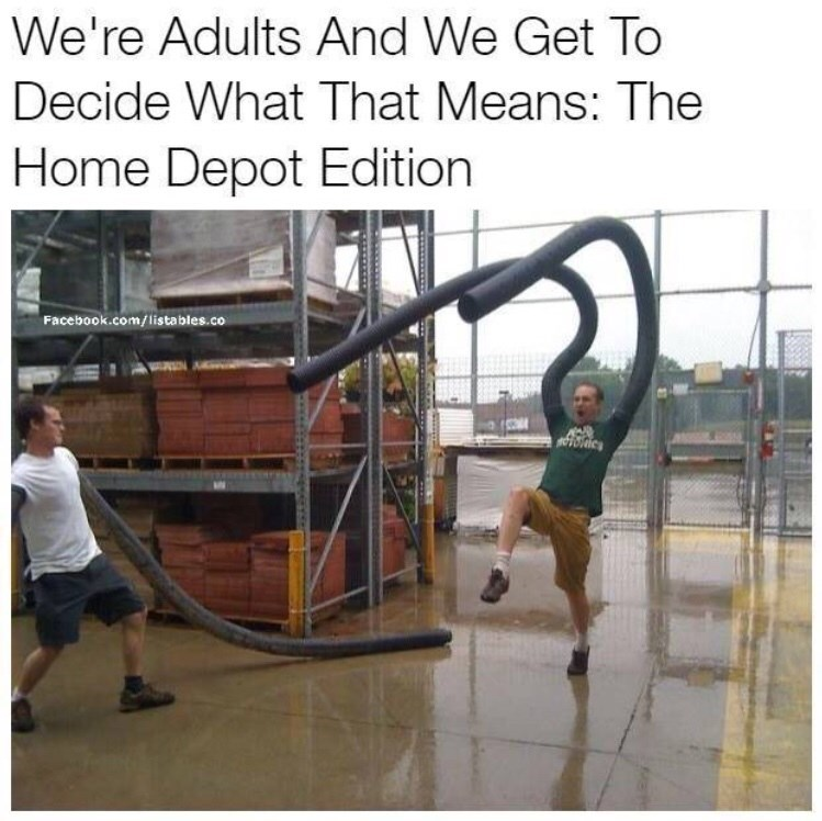 Street stunts - We're Adults And We Get To Decide What That Means: The Home Depot Edition Facebook.com/listables.co TOTlc