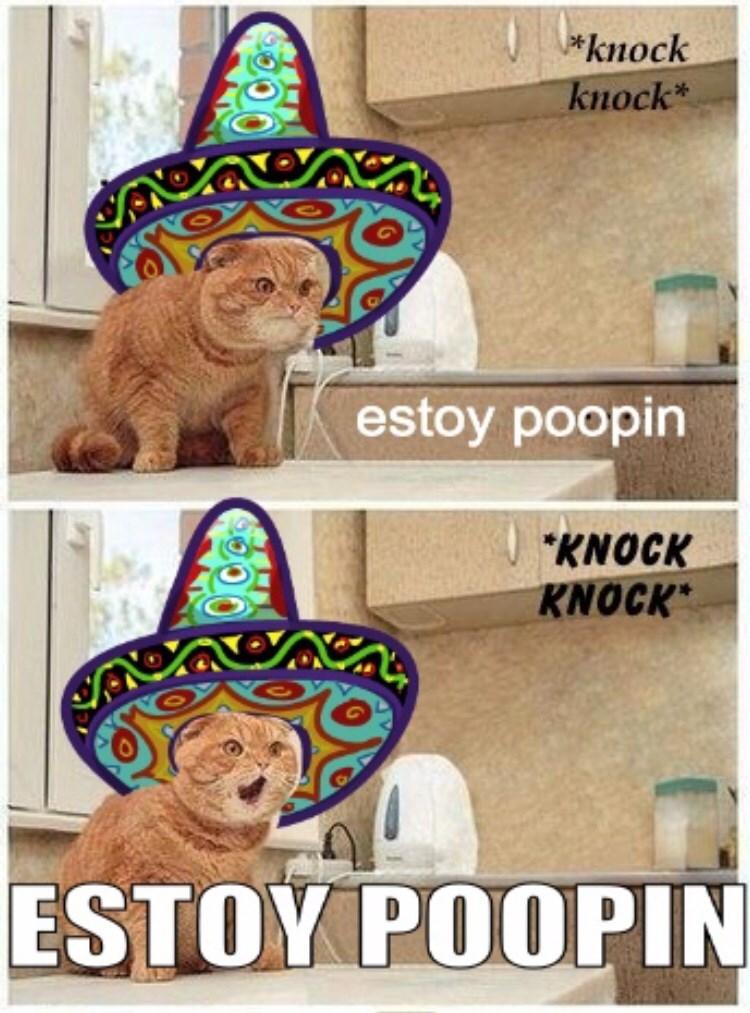 Party supply - *knock knock* estoy poopin KNOCK KNOCK ESTOY POOPIN