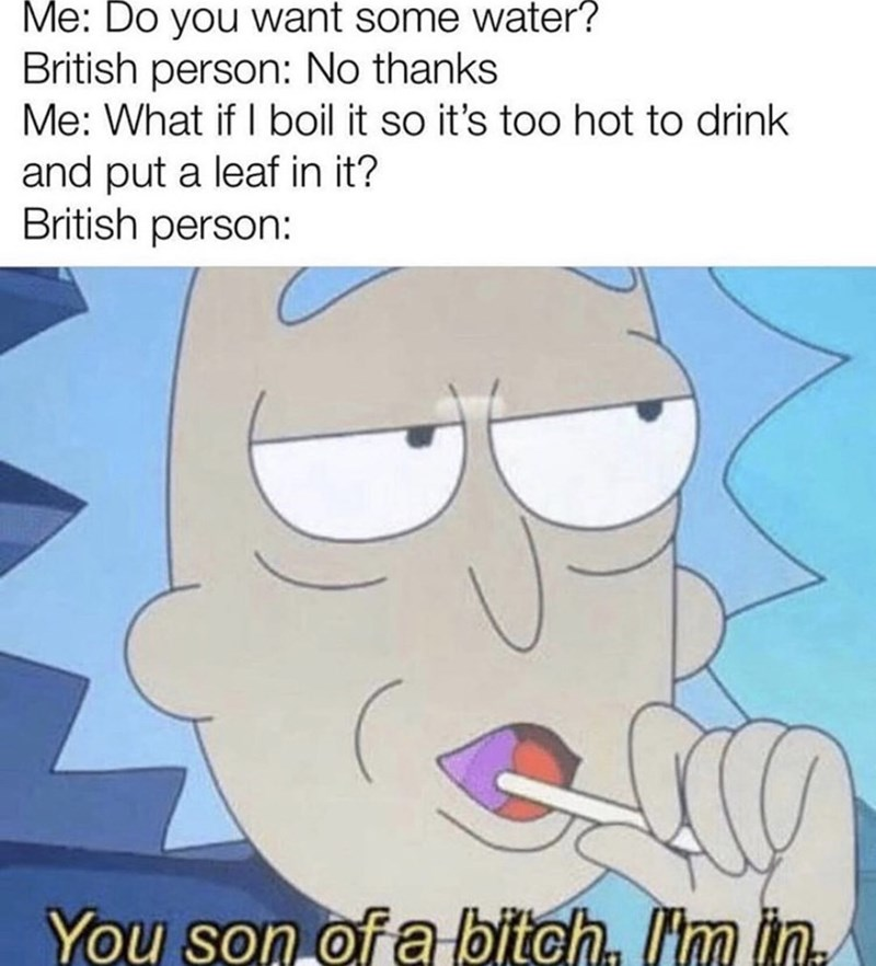 Cartoon - Me: Do you want some water? British person: No thanks Me: What if I boil it so it's too hot to drink and put a leaf in it? British person: You son of a bitch m in