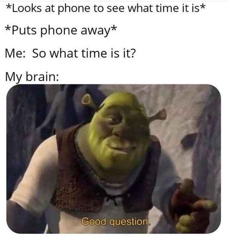 Photo caption - *Looks at phone to see what time it is* *Puts phone away* Me: So what time is it? My brain: Good question.