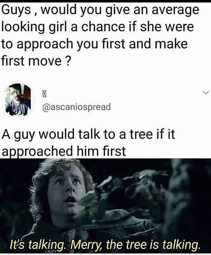 Text - Guys, would you give an average looking girl a chance if she were to approach you first and make first move? @ascaniospread A guy would talk to a tree if it approached him first It's talking. Merry, the tree is talking.