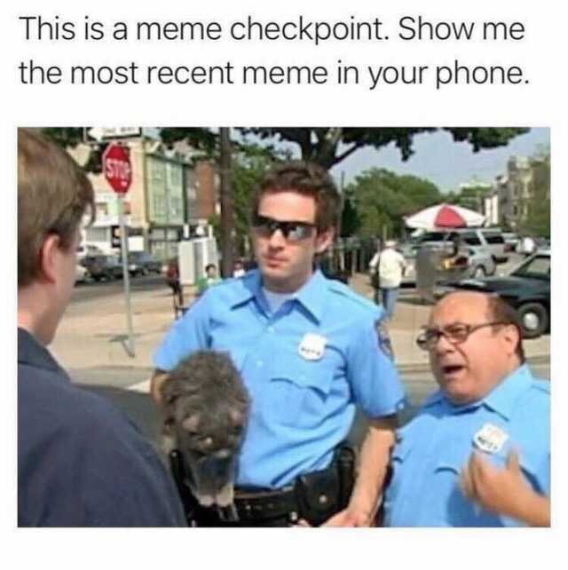 Community - This is a meme checkpoint. Show me the most recent meme in your phone. STOP