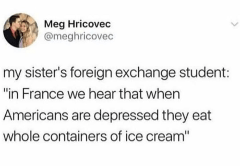 funny memes about ice cream, foreign exchange student