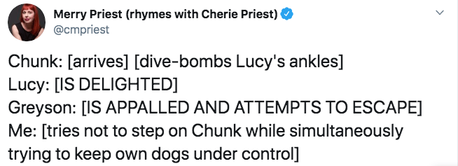 Text - Merry Priest (rhymes with Cherie Priest) @cmpriest Chunk: [arrives] [dive-bombs Lucy's ankles] Lucy: [IS DELIGHTED] Greyson: [IS APPALLED AND ATTEMPTS TO ESCAPE] Me: [tries not to step on Chunk while simultaneously trying to keep own dogs under control]