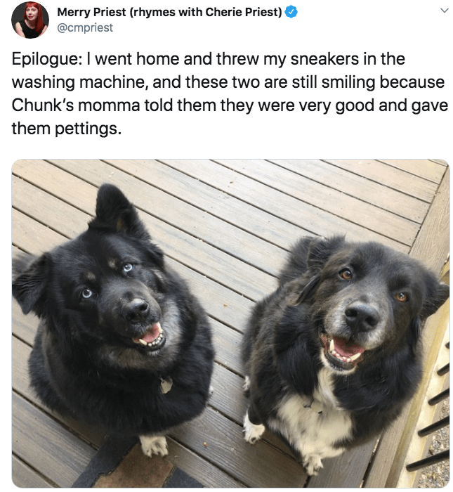Dog - Merry Priest (rhymes with Cherie Priest) @cmpriest Epilogue: I went home and threw my sneakers in the washing machine, and these two are still smiling because Chunk's momma told them they were very good and gave them pettings. 43