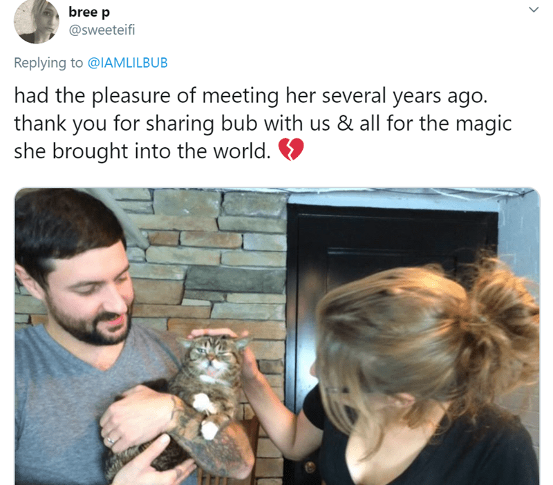 Human - bree p @sweeteifi Replying to @IAMLILBUB had the pleasure of meeting her several years ago. thank you for sharing bub with us & all for the magic she brought into the world.