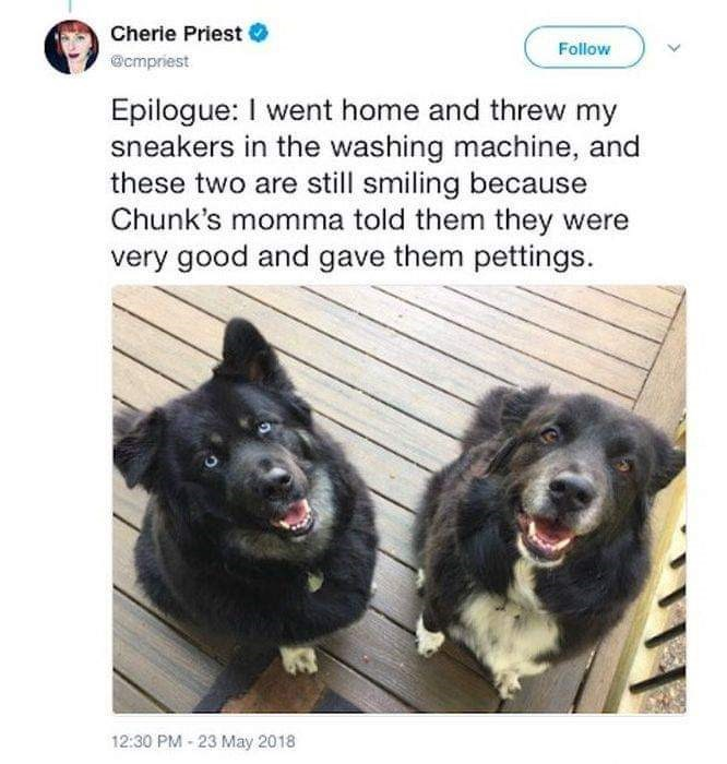 Dog - Cherie Priest Follow @cmpriest Epilogue: I went home and threw my sneakers in the washing machine, and these two are still smiling because Chunk's momma told them they were very good and gave them pettings. 12:30 PM 23 May 2018