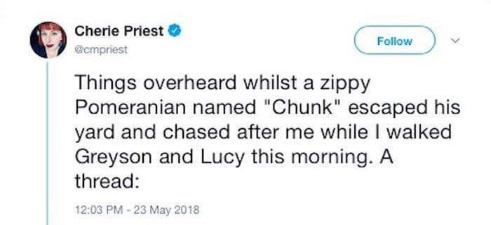 """Text - Cherie Priest Follow @cmpriest Things overheard whilst a zippy Pomeranian named """"Chunk"""" escaped his yard and chased after me while I walked Greyson and Lucy this morning. A thread: 12:03 PM-23 May 2018"""