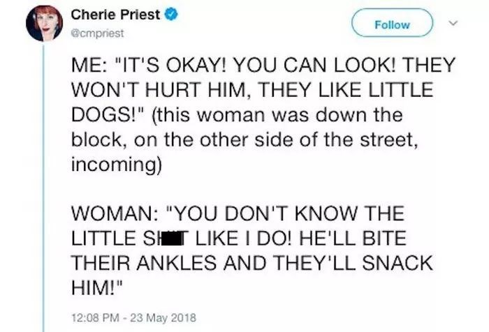 """Text - Cherie Priest Follow @cmpriest ME: """"IT'S OKAY! YOU CAN LOOK! THEY WON'T HURT HIM, THEY LIKE LITTLE DOGS!"""" (this woman was down the block, on the other side of the street, incoming) WOMAN: """"YOU DON'T KNOW THE LITTLE SHT LIKE I DO! HE'LL BITE THEIR ANKLES AND THEY'LL SNACK HIM!"""" 12:08 PM- 23 May 2018"""