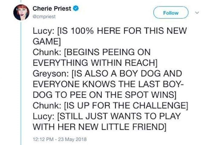 Text - Cherie Priest Follow @cmpriest Lucy: [IS 100% HERE FOR THIS NEW GAME] Chunk: [BEGINS PEEING ON EVERYTHING WITHIN REACH] Greyson: [IS ALSO A BOY DOG AND EVERYONE KNOWS THE LAST BOY- DOG TO PEE ON THE SPOT WINS] Chunk: [IS UP FOR THE CHALLENGE] Lucy: [STILL JUST WANTS TO PLAY WITH HER NEW LITTLE FRIEND] 12:12 PM-23 May 2018