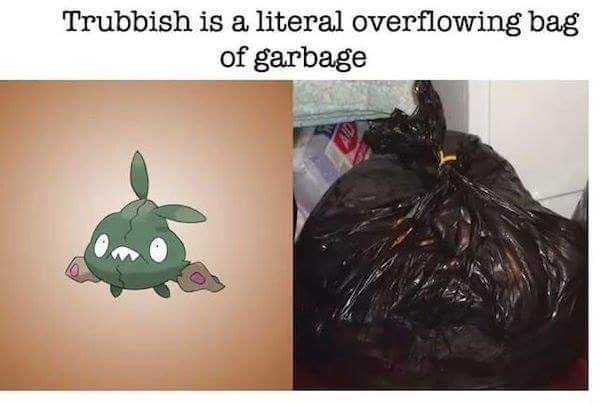 Turtle - Trubbish is a literal overflowing bag of garbage