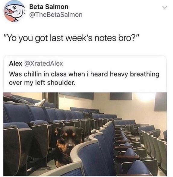 "Product - Beta Salmon @TheBetaSalmon ""Yo you got last week's notes bro?"" Alex @XratedAlex Was chillin in class when i heard heavy breathing over my left shoulder."