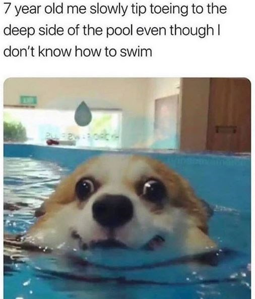 Canidae - 7 year old me slowly tip toeing to the deep side of the pool even though I don't know how to swim