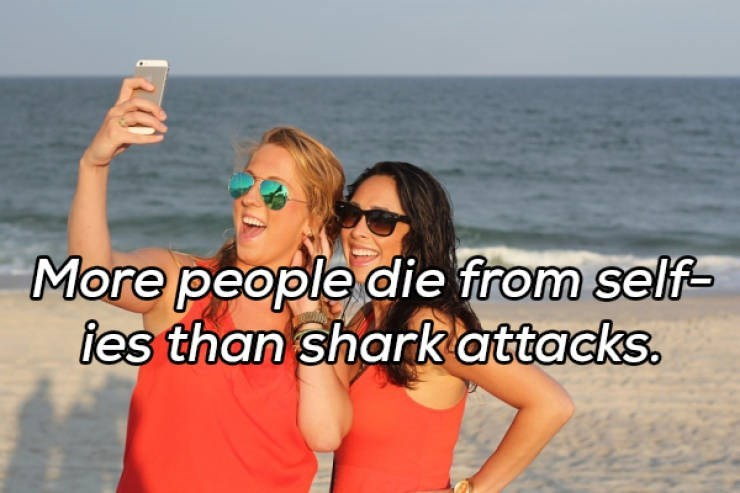 Friendship - More people die from self- tes than shark attacks.