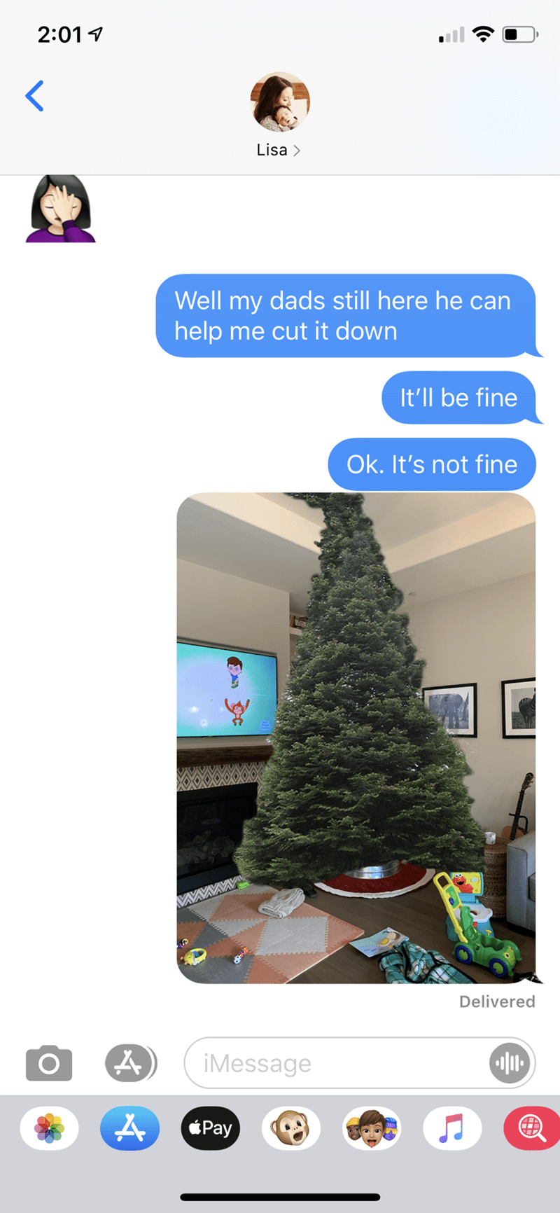 Christmas tree - 2:01 1 Lisa > Well my dads still here he can help me cut it down It'll be fine Ok. It's not fine Delivered iMessage Pay
