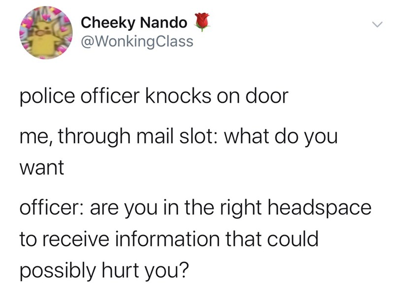 Text - Cheeky Nando @WonkingClass police officer knocks on door me, through mail slot: what do you want officer: are you in the right headspace to receive information that could possibly hurt you?