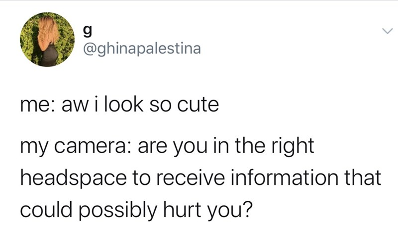 Text - g @ghinapalestina me: aw i look so cute my camera: are you in the right headspace to receive information that could possibly hurt you?