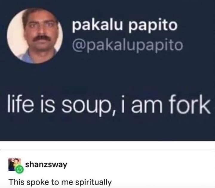 Text - pakalu papito @pakalupapito life is soup, i am fork shanzsway This spoke to me spiritually