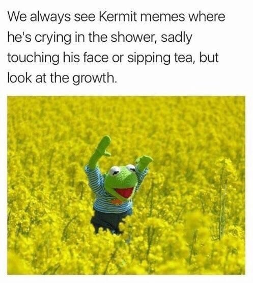 Yellow - We always see Kermit memes where he's crying in the shower, sadly touching his face or sipping tea, but look at the growth.