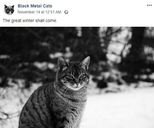 Cat - Black Metal Cats November 14 at 12:51 AM The great winter shall come.