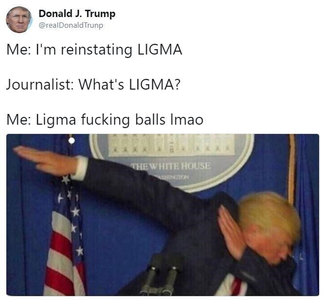 Text - Donald J. Trump @realDonald Trunp Me: I'm reinstating LIGMA Journalist: What's LIGMA? Me: Ligma fucking balls Imao THE WHITE HOUSE INGTON