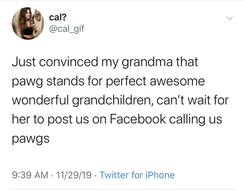 Text - cal? @cal_gif Just convinced my grandma that pawg stands for perfect awesome wonderful grandchildren, can't wait for her to post us on Facebook calling us pawgs 9:39 AM - 11/29/19 · Twitter for iPhone