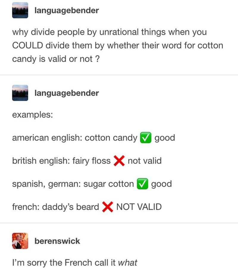 Text - Text - languagebender why divide people by unrational things when you COULD divide them by whether their word for cotton candy is valid or not ? languagebender examples: american english: cotton candy good british english: fairy floss X not valid spanish, german: sugar cotton good french: daddy's beard X NOT VALID berenswick I'm sorry the French call it what