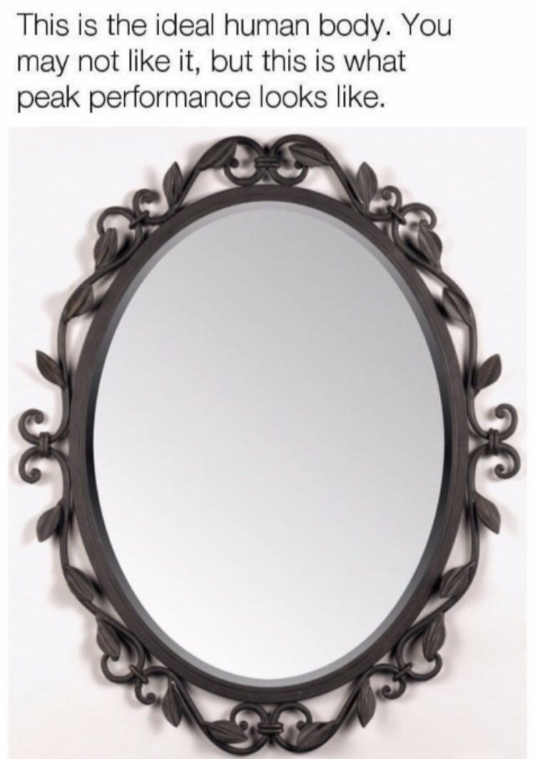 Mirror - This is the ideal human body. You may not like it, but this is what peak performance looks like.