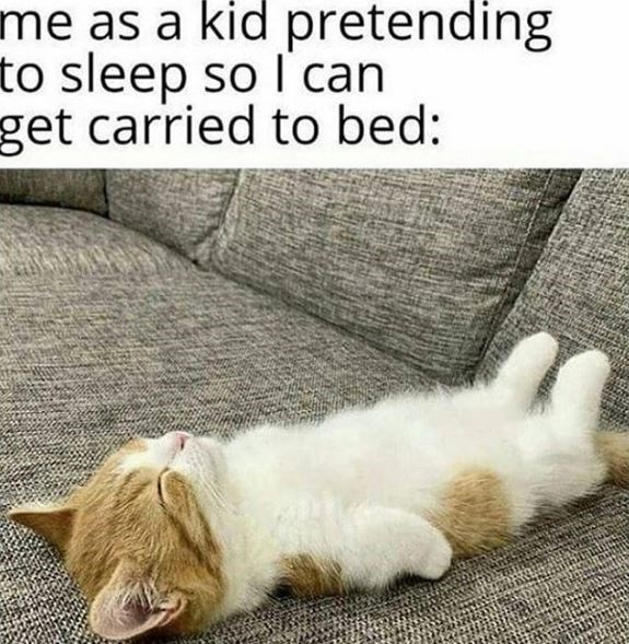 Cat - me as a kid pretending to sleep so l' can get carried to bed: