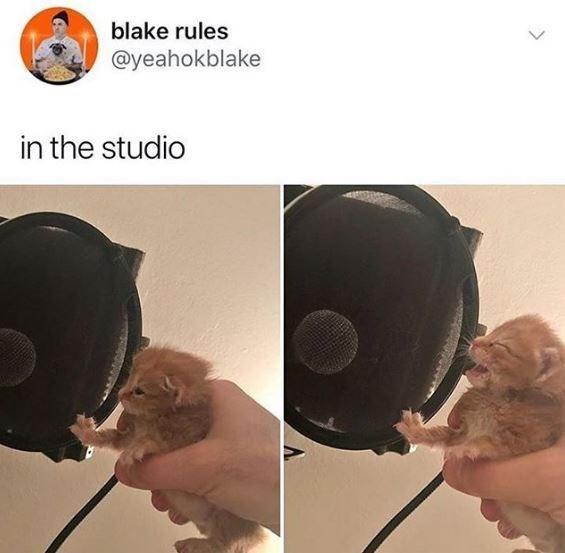 Helmet - blake rules @yeahokblake in the studio