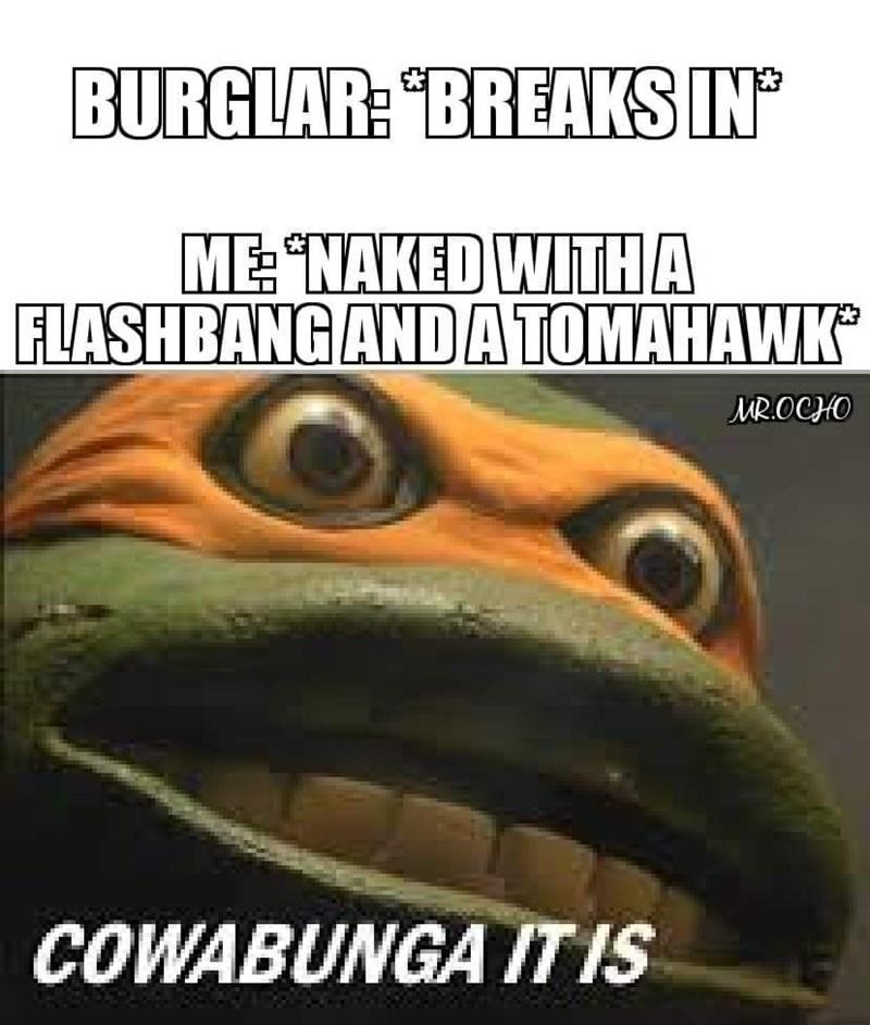 Eye - BURGLAR: BREAKS IN ME NAKED WITHA FLASHBANG ANDATOMAHAWK MR.OCHO COWABUNGA IT IS