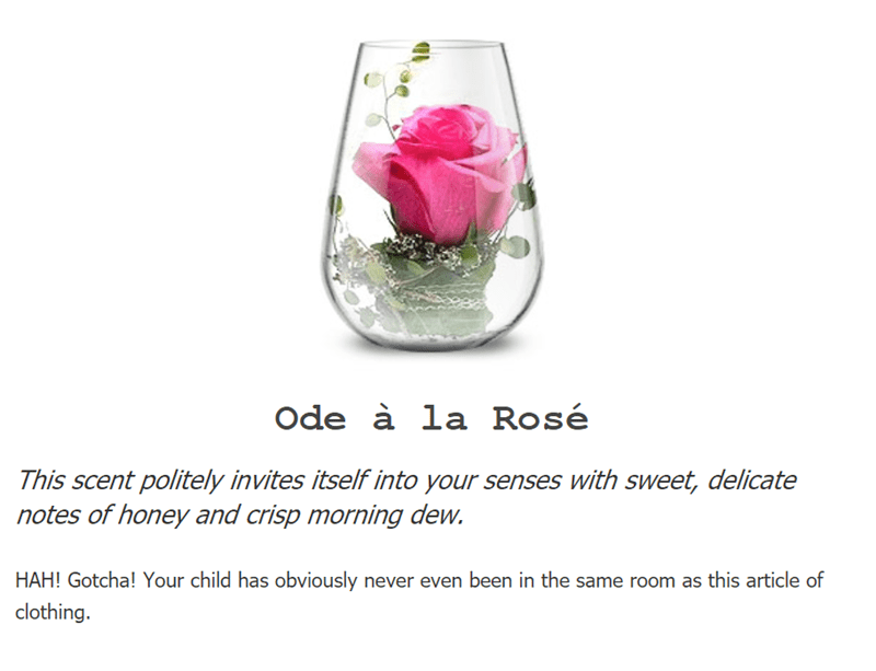 Pink - Ode à la Rosé This scent politely invites itself into your senses with sweet, delicate notes of honey and crisp morning dew. HAH! Gotcha! Your child has obviously never even been in the same room as this article of clothing.