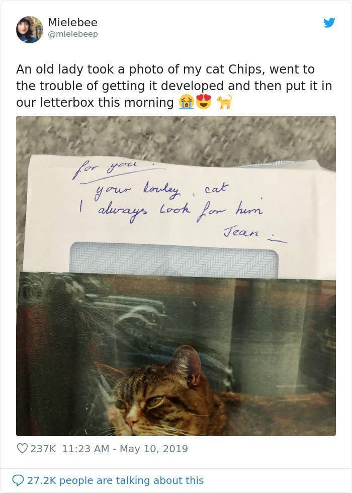 Text - Mielebee @mielebeep An old lady took a photo of my cat Chips, went to the trouble of getting it developed and then put it in our letterbox this morning for you your loudey Look   alurays cat for hai Jean hum O 237K 11:23 AM - May 10, 2019 27.2K people are talking about this