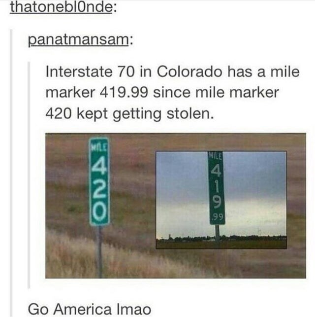 Text - thatoneblOnde: panatmansam: Interstate 70 in Colorado has a mile marker 419.99 since mile marker 420 kept getting stolen. MILE MILE 4 99 Go America Imao