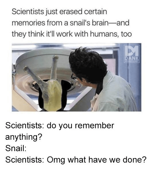 Text - Scientists just erased certain memories from a snail's brain-and they think it'll work with humans, too DANK AD0IOTPI Scientists: do you remember anything? Snail: Scientists: Omg what have we done?