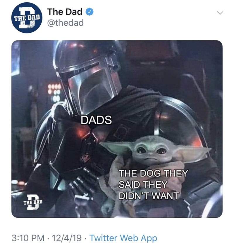 Funny Twitter meme about dads getting a dog they originally said they didn't want, featuring Baby Yoda