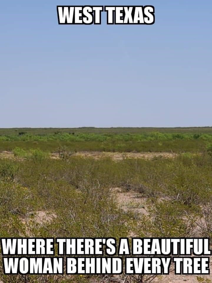 Natural environment - WEST TEXAS WHERE THERE'S A BEAUTIFUL WOMAN BEHIND EVERY TREE