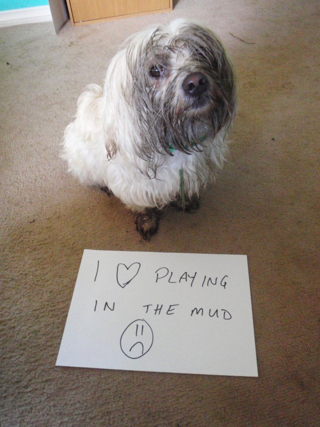 Dog - I♡ PLAYING THE MUD IN 1.