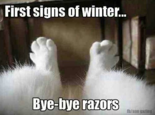 Photo caption - First signs of winter. Bye-bye razors