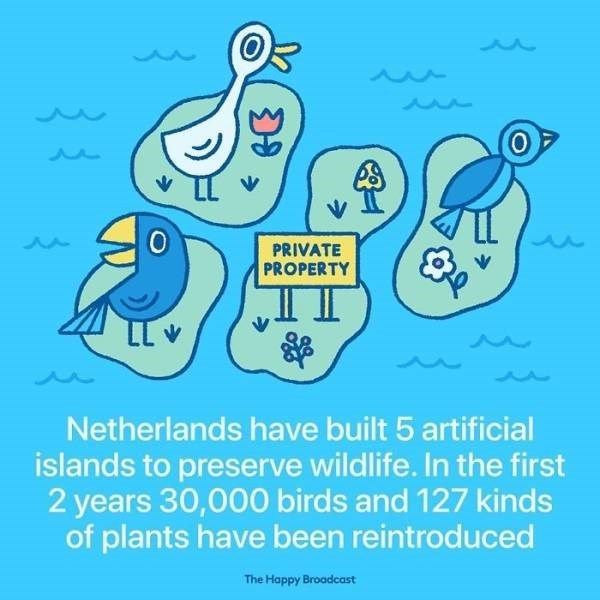 Text - PRIVATE PROPERTY Netherlands have built 5 artificial islands to preserve wildlife. In the first 2 years 30,000 birds and 127 kinds of plants have been reintroduced The Happy Broadcast