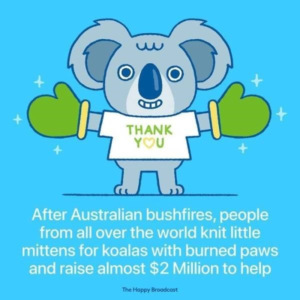 Cartoon - THANK YOU After Australian bushfires, people from all over the world knit little mittens for koalas with burned paws and raise almost $2 Million to help The Happy Broadcast