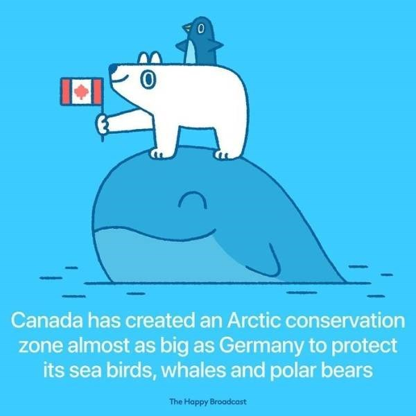 Cartoon - Canada has created an Arctic conservation zone almost as big as Germany to protect its sea birds, whales and polar bears The Happy Broadcast
