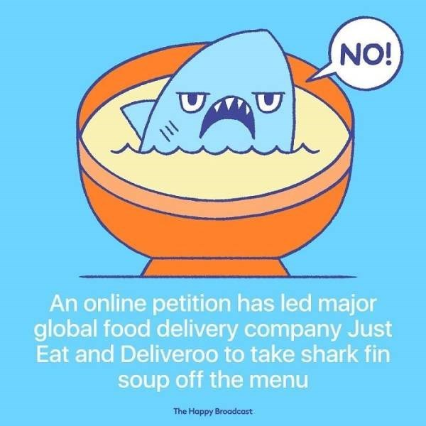 Cartoon - NO! An online petition has led major global food delivery company Just Eat and Deliveroo to take shark fin soup off the menu The Happy Broadcast