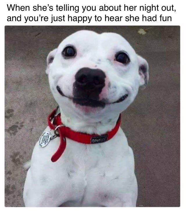 Dog - When she's telling you about her night out, and you're just happy to hear she had fun OPeto