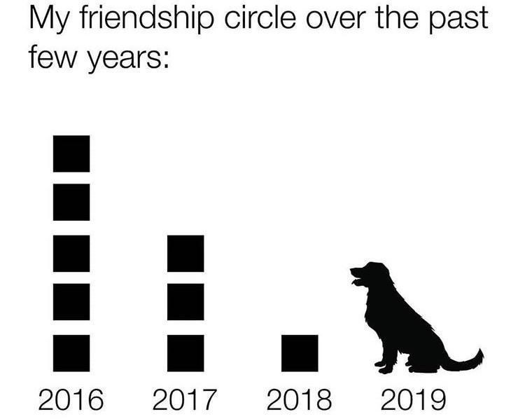 Text - My friendship circle over the past few years: 2019 2018 2017 2016