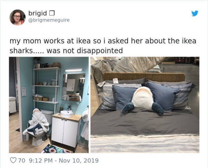 Product - brigid O @brigmemeguire my mom works at ikea so i asked her about the ikea sharks... was not disappointed 70 9:12 PM- Nov 10, 2019