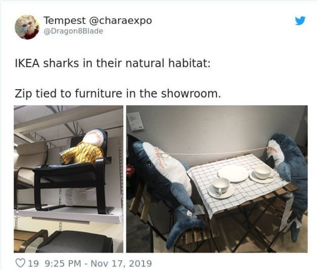 Product - Tempest @charaexpo @Dragon8Blade IKEA sharks in their natural habitat: Zip tied to furniture in the showroom. O 19 9:25 PM - Nov 17, 2019