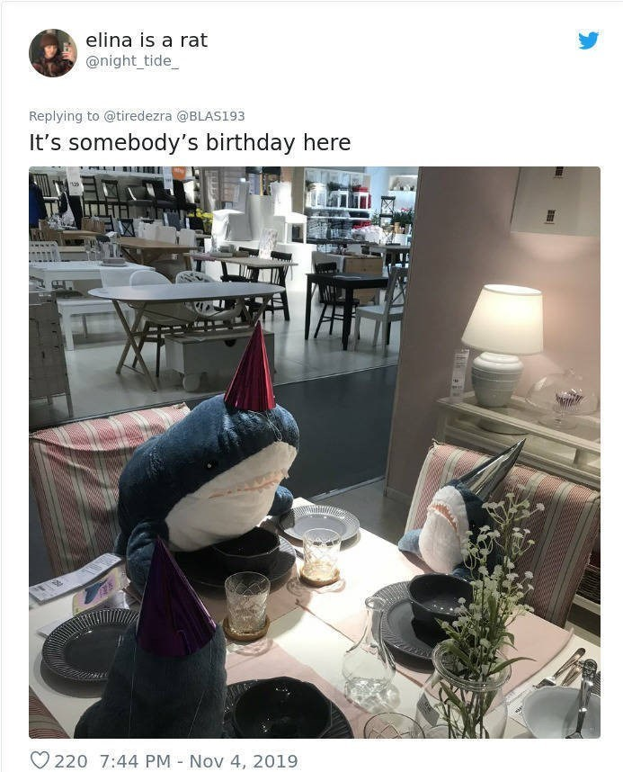 Property - elina is a rat @night_tide Replying to @tiredezra @BLAS193 It's somebody's birthday here O 220 7:44 PM - Nov 4, 2019