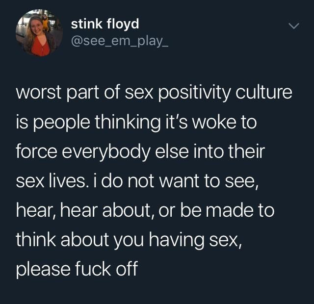 Text - stink floyd @see_em_play_ worst part of sex positivity culture is people thinking it's woke to force everybody else into their sex lives. i do not want to see, hear, hear about, or be made to think about you having sex, please fuck off